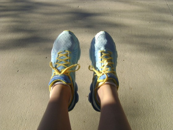 Yes, I went for the purchase and bought the New Balance 890s! Cinderella edition!